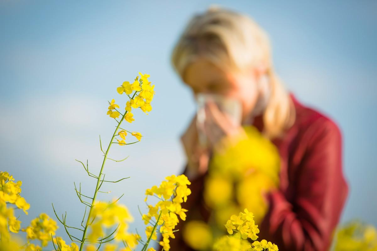 A Natural Approach to Spring Allergies